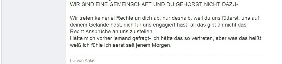 Volpino_Tagebuch_04
